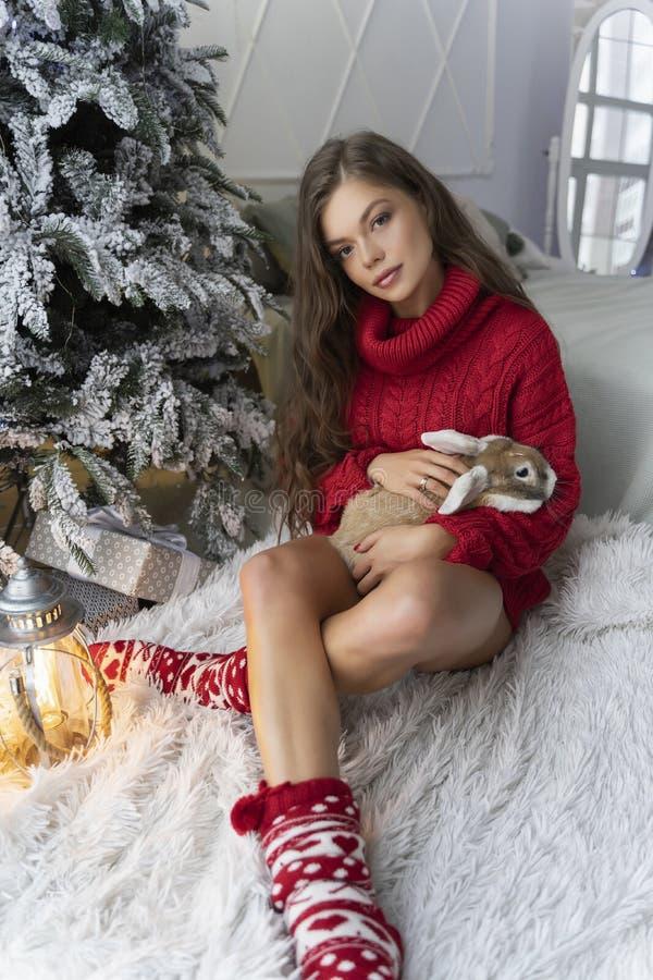 Den härliga långbenta unga flickan, den bärande röda tröjan och ullsockor sitter på fönstret och rymmer försiktigt en kanin i hen royaltyfria bilder