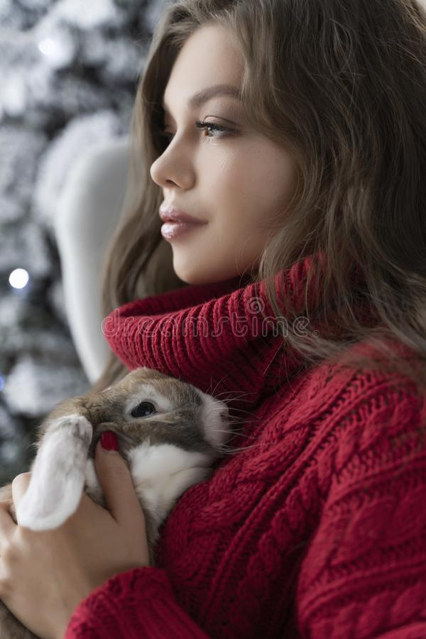 Den härliga långbenta unga flickan, den bärande röda tröjan och ullsockor sitter på fönstret och rymmer försiktigt en kanin i hen royaltyfria foton