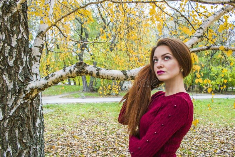 Den härliga le kvinnan i hösten parkerar arkivbild
