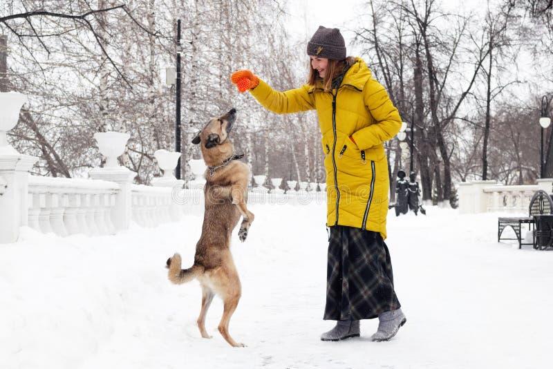 Den härliga le unga kvinnan spelar med hennes hund i en snöig vinter parkerar arkivfoto