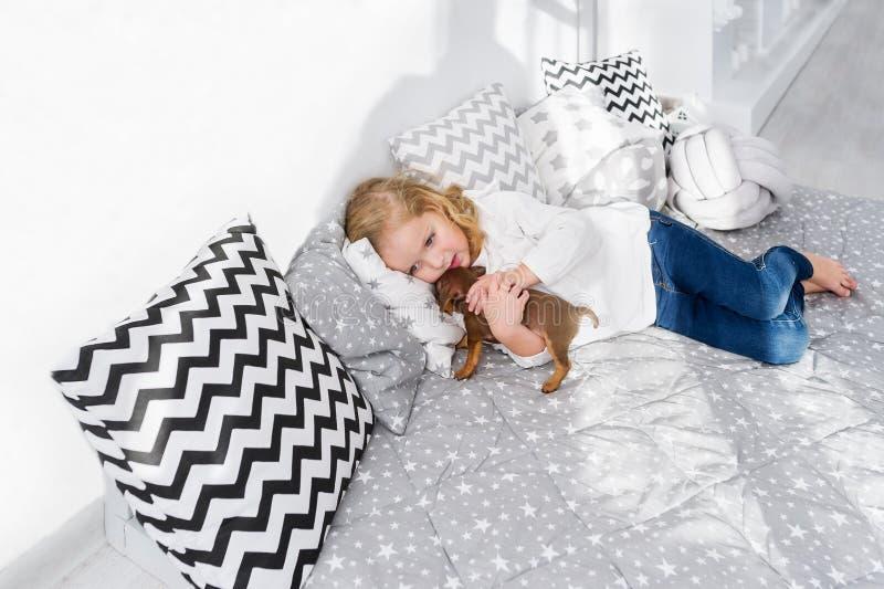 Den härliga lilla flickan ligger med valpen av taxhunden i säng royaltyfri fotografi