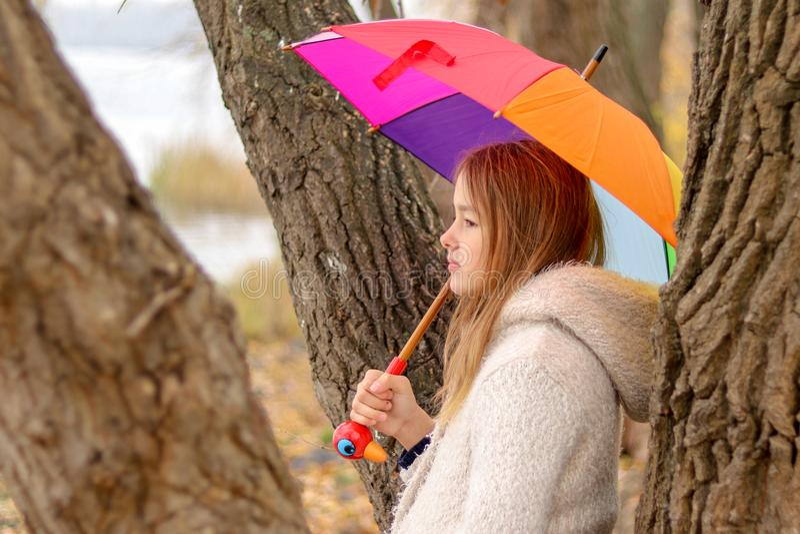 Den härliga lilla flickan med regnbågen färgade paraplyet som drömmer att bli nära trädet utanför royaltyfri foto