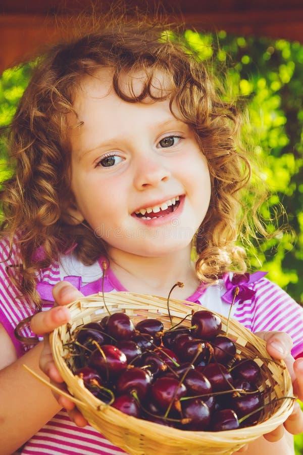 Den härliga lilla flickan rymmer en korg av söta körsbär royaltyfri foto