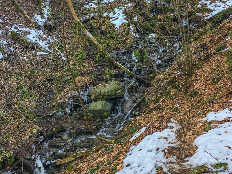 Den härliga lilla strömmen med vaggar djupfryst med istappar men fortfarande tryckningsvatten i ett skoglandskap i Tyskland arkivbild