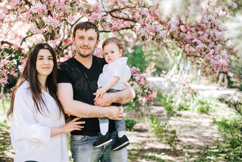 Den härliga lyckliga familjen med pysen står i en omfamning nära trädet av körsbärsröda blomningar som ler Bakgrund Bokeh arkivbilder