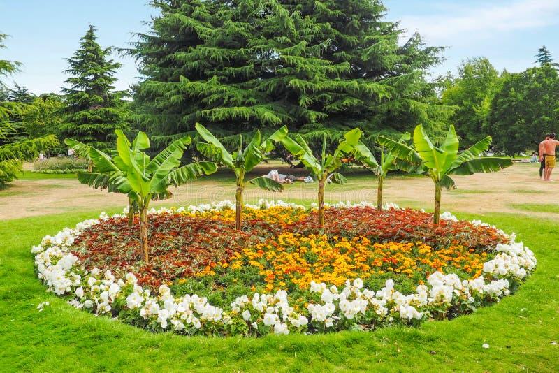 Den härliga nyanserade blomsterrabatten i Greenwich parkerar, London på en solig sommardag royaltyfria foton