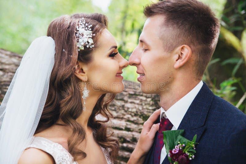 Den härliga den nygift personbruden och brudgummen som in kramar, parkerar royaltyfria bilder