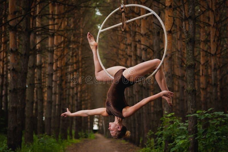Den härliga och behagfulla flyg- gymnasten utför övningar på luftcirkeln arkivbilder