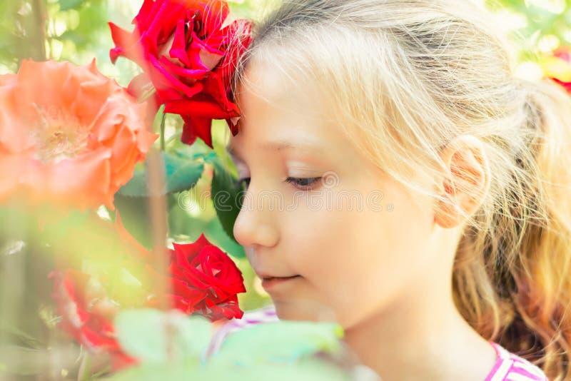 Den härliga och gulliga flickan i trädgården med rosor, den blonda flickan tycker om skönheten och aromen av röda rosor royaltyfri bild