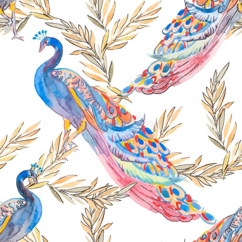 Den härliga påfågeln mönstrar vektor Påfåglar och växter royaltyfri illustrationer