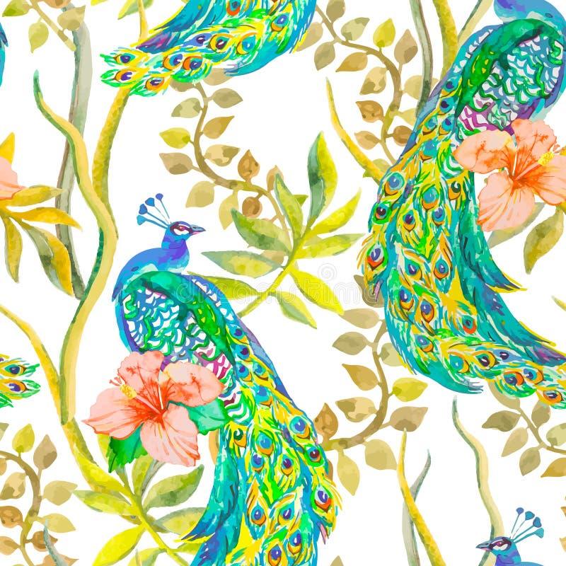Den härliga påfågeln mönstrar vektor Påfåglar och växter, tropiska blommor, hibiskus stock illustrationer