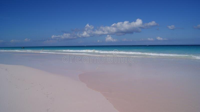 Den härliga sikten av de rosa sanderna sätter på land med kristallklart vatten för turkos i hamnön, Bahamas arkivfoto