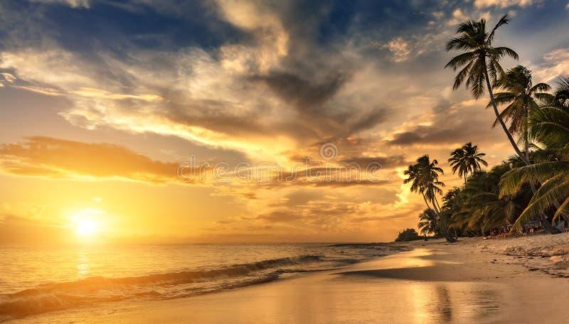 Den härliga solnedgången över havet med en sikt på gömma i handflatan fotografering för bildbyråer
