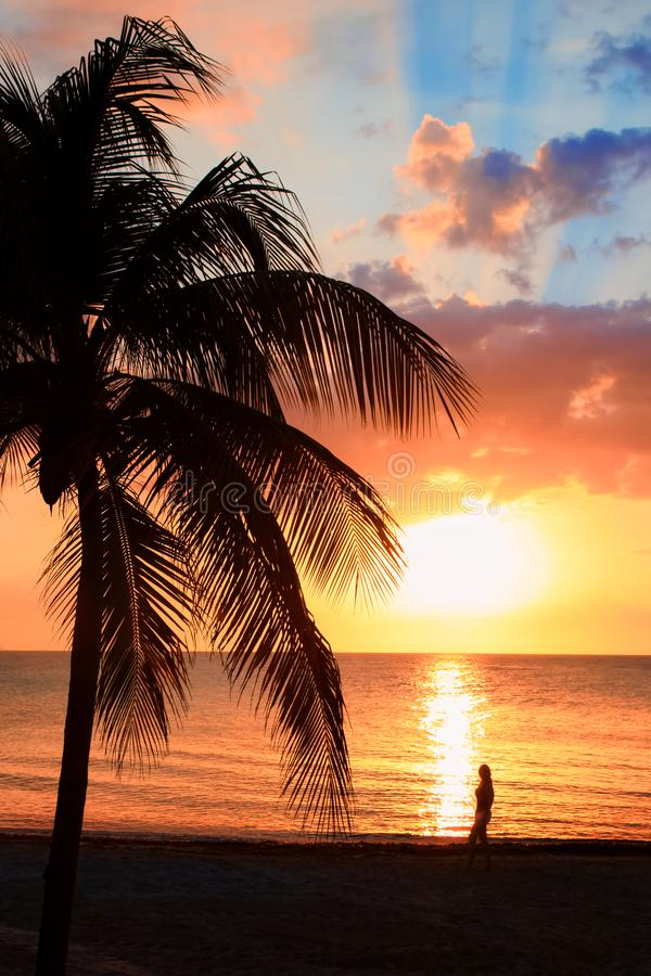 Den härliga solnedgången på stranden, sol går ner till havet, kvinnakontur på bayshoren Omgivande stillhet, vilar och avkopplingc arkivbild