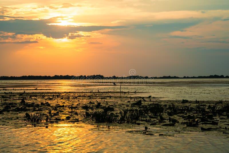 Den härliga sommarsolnedgången med solljus reflekterade i vattnet av Donaudeltan arkivfoton