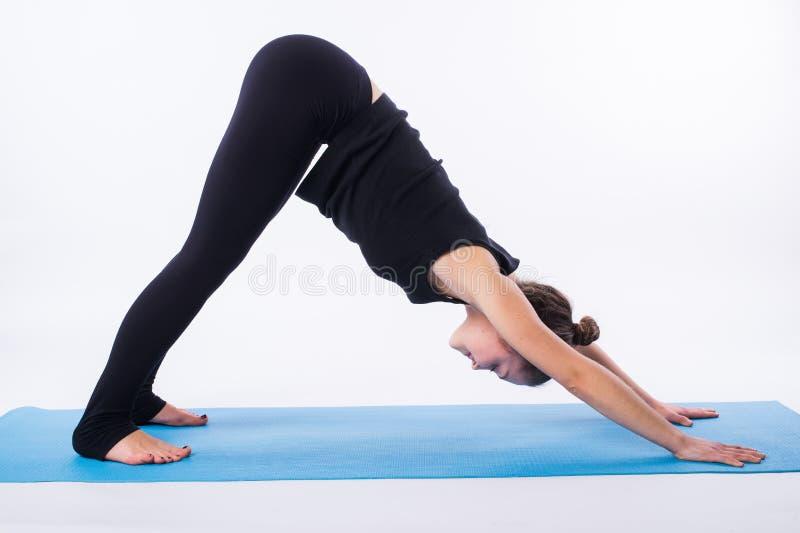 Den härliga sportiga passformyoginikvinnan öva svanasanaen för yogaasanaadhomukhaen - nedåt - som vänder mot hunden, poserar isol royaltyfri bild