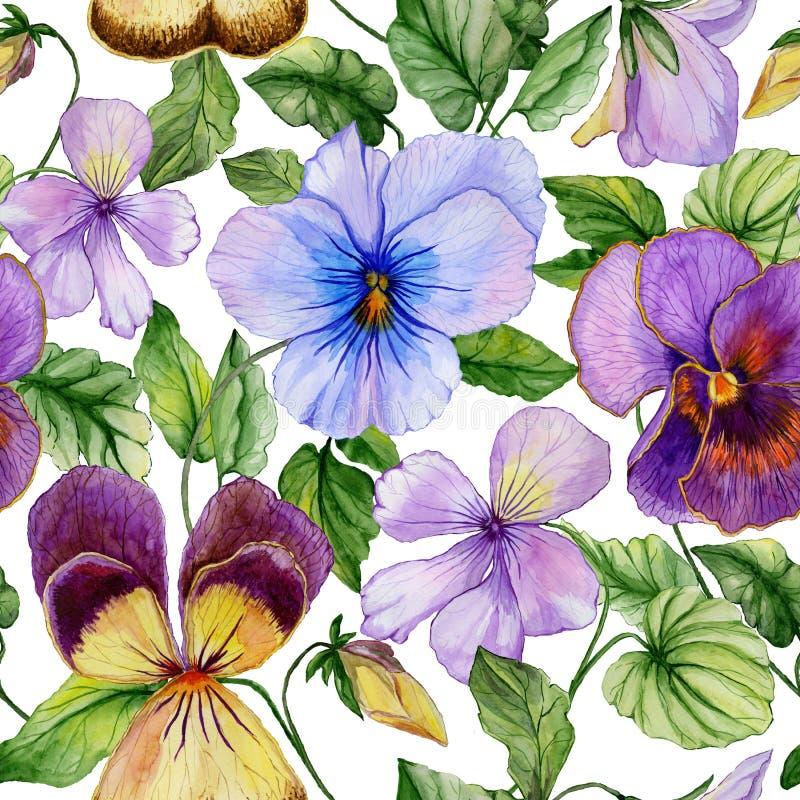Den härliga stora livliga altfiolen blommar med gröna sidor på vit bakgrund Sömlös blom- modell för vår eller för sommar stock illustrationer