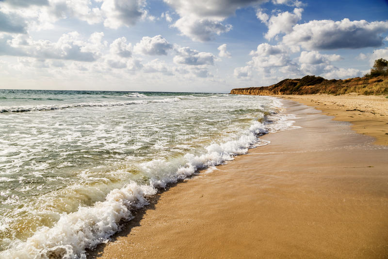 den härliga stranden tömmer royaltyfri fotografi
