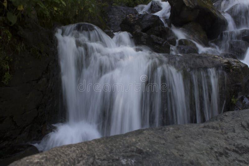 Den härliga tapeten av vattenfallet, den snabba strömmen mjölkar flöde Flod Abchazien för stenigt berg i skogvattenfallmejerit fotografering för bildbyråer