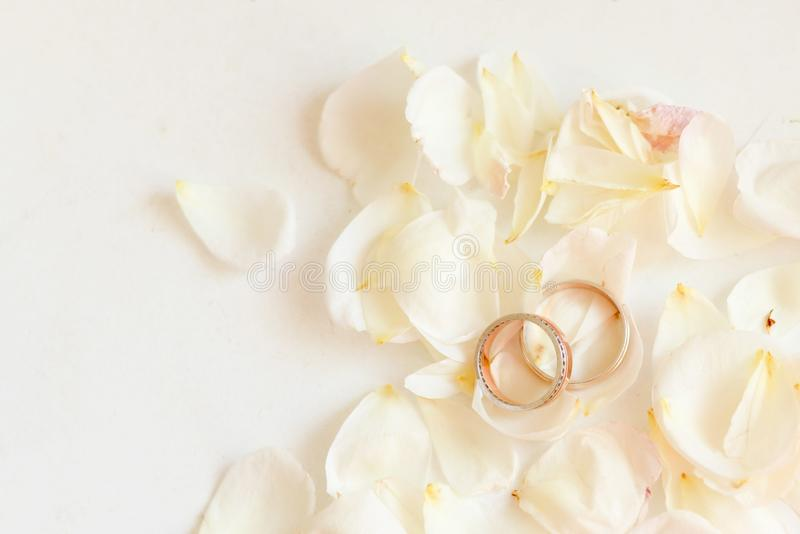 Den härliga tonade bilden med vigselringar ligger på vit mot bakgrunden av blommor royaltyfria foton