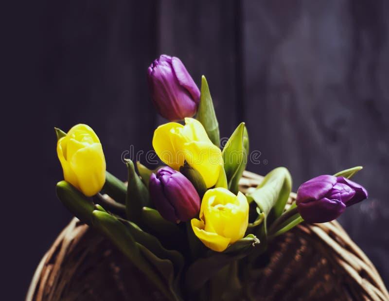 Den härliga tulpan blommar i en vide- korg arkivbild