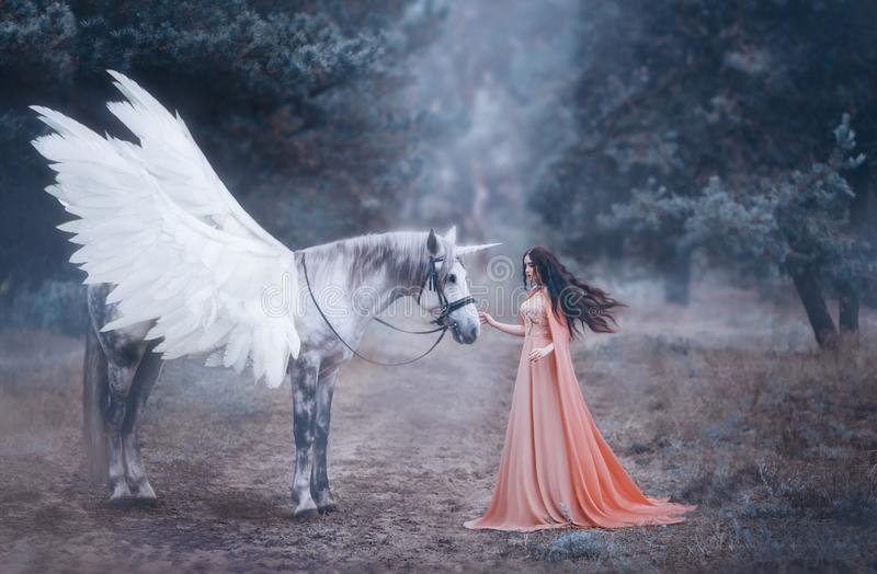 Den härliga unga älvan som går med en enhörning i skogen är hon, iklädd en lång orange klänning med en kappa Den härliga putsa royaltyfria bilder