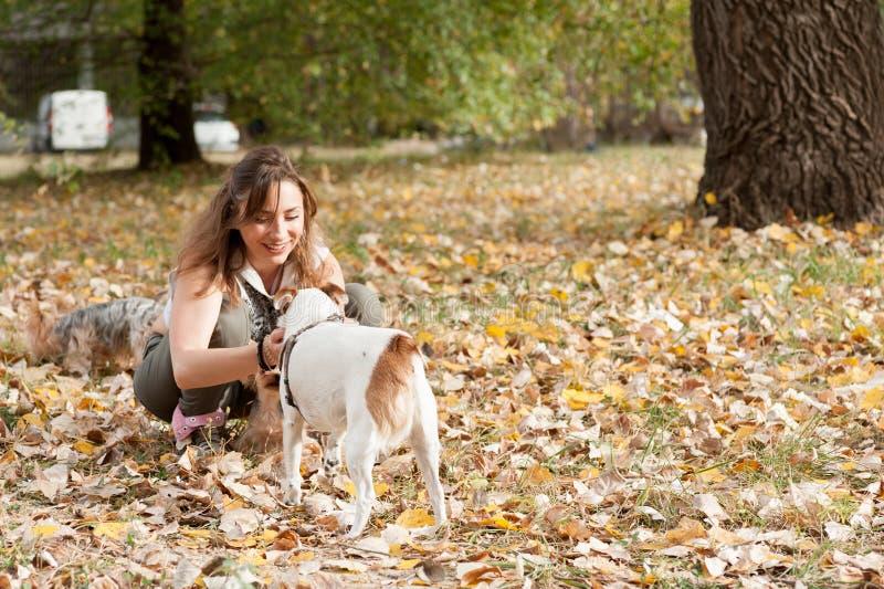 Den härliga unga flickan med hennes valp för hunden för den Yorkshire terriern som tycker om och spelar i höstdagen i, parkerar d royaltyfri foto