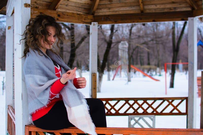Den härliga unga kvinnan i vinter parkerar A arkivbild