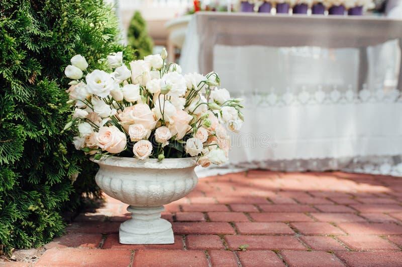 Den härliga våren blommar i keramisk vas arkivfoton