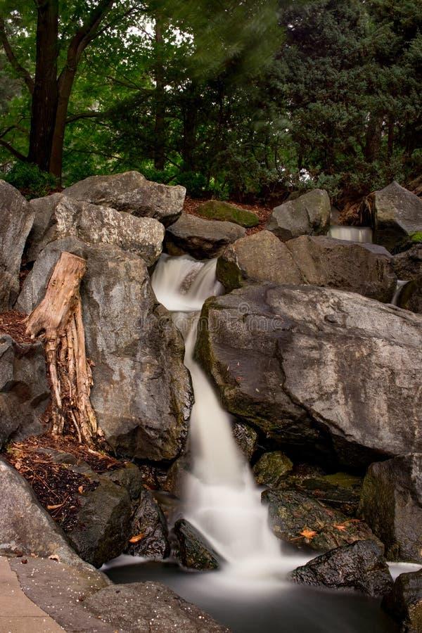 Den härliga vattenfallet på den kastanjebruna botaniska trädgården arkivfoton