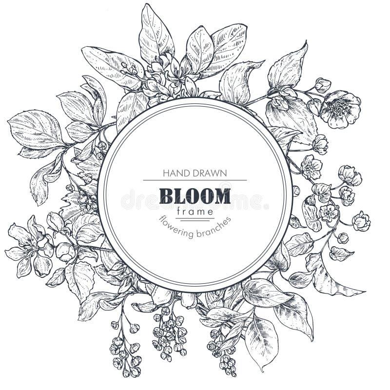 Den härliga vektorramen med den drog handen förgrena sig, blommar och växter stock illustrationer