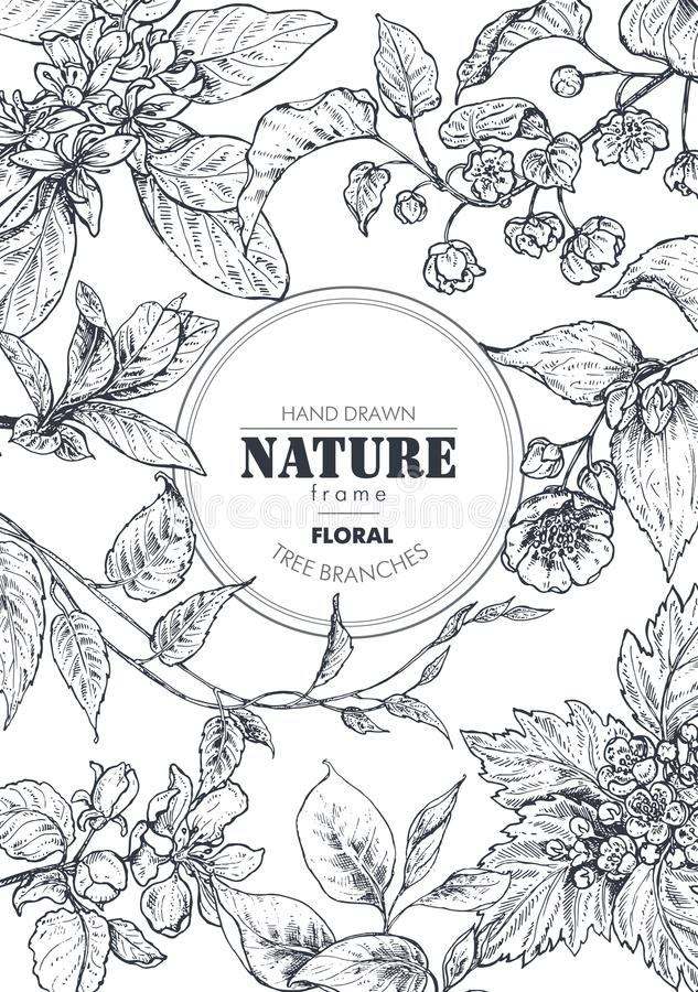 Den härliga vektorramen med den drog handen förgrena sig, blommar och växter vektor illustrationer