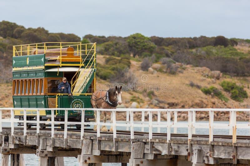 Den häst drog spårvagnen mellan segrarehamnen och granitön in royaltyfri fotografi