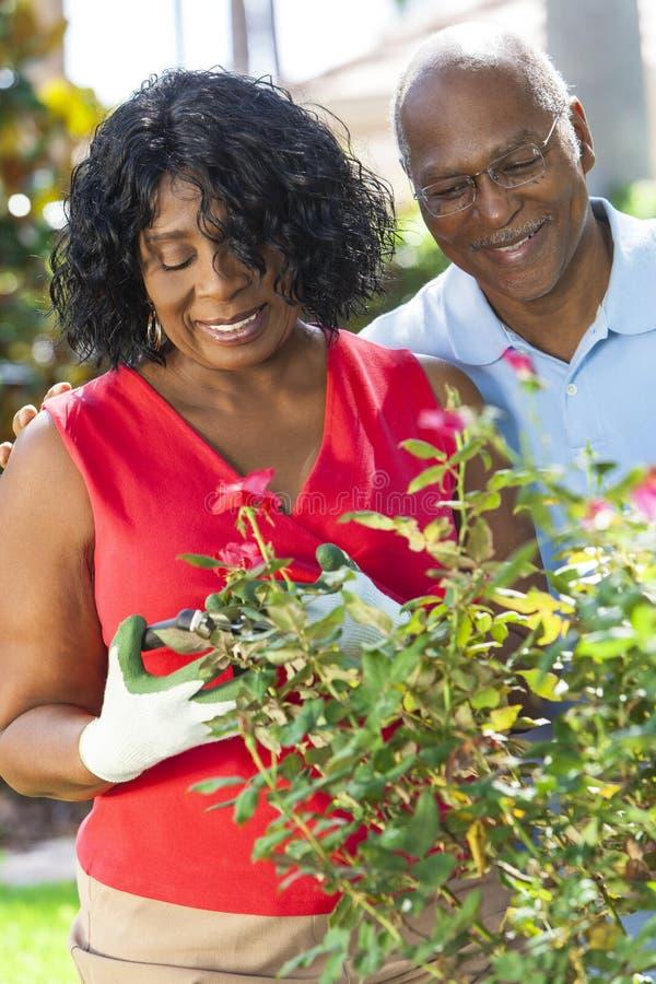 Den höga afrikansk amerikanmankvinnan kopplar ihop att arbeta i trädgården arkivfoton