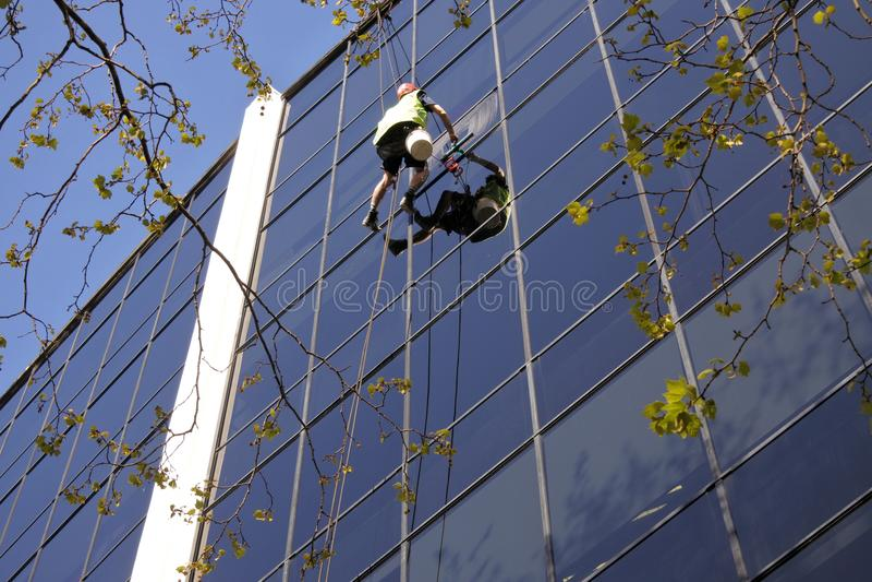 Den höga arbetaren för löneförhöjningfönsterlokalvård gör ren en kontorsbyggnad royaltyfri bild