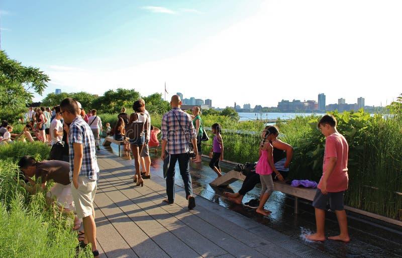 Den höga linjen, New York City royaltyfri bild