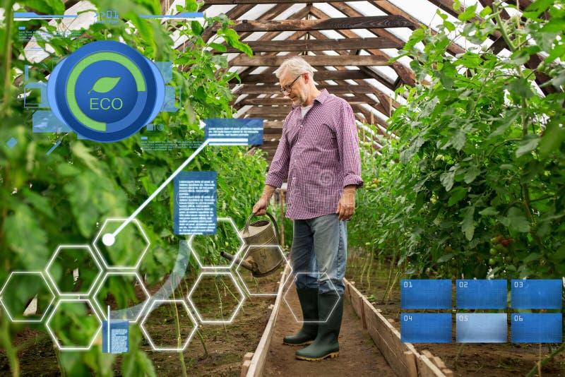 Den höga mannen med att bevattna kan på lantgårdväxthuset arkivfoto