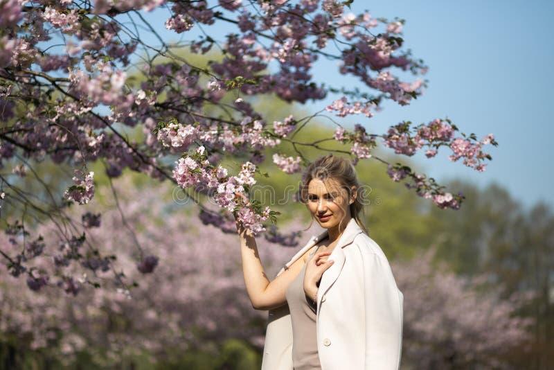 Den h?rliga blonda unga kvinnan i Sakura Cherry Blossom parkerar i v?r som tycker om naturen och fri tid under hennes resande fotografering för bildbyråer
