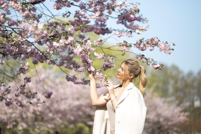 Den h?rliga blonda unga kvinnan i Sakura Cherry Blossom parkerar i v?r som tycker om naturen och fri tid under hennes resande royaltyfria bilder