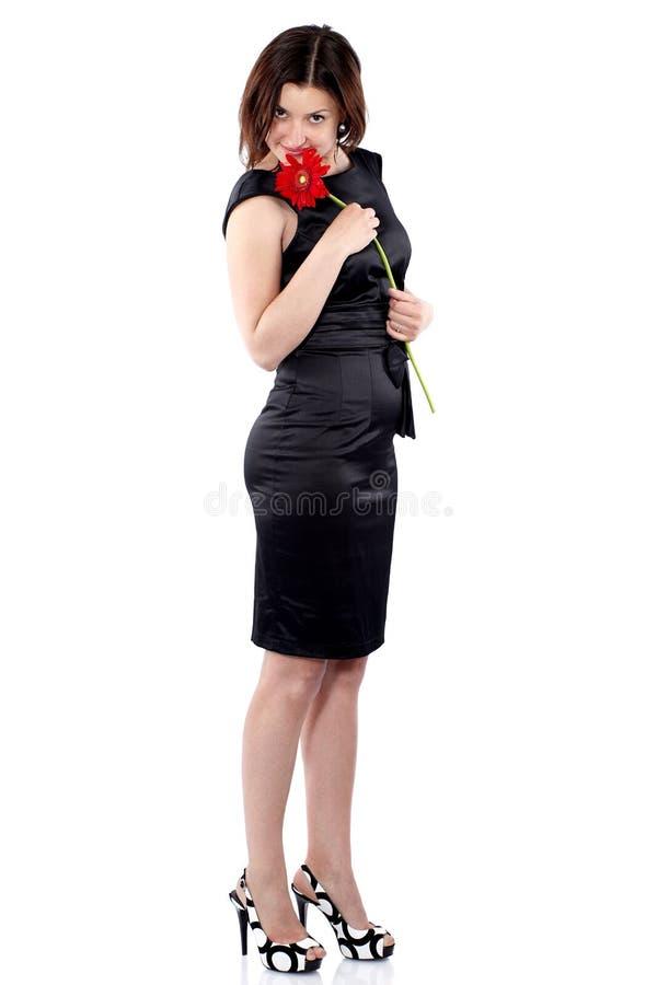 Den h?rliga unga kvinnan i svart kl?nning rymmer gerberablomman i h?nder, v?nde r?tsidan och blickarna i kameran royaltyfria bilder