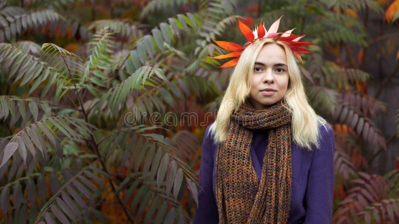 Den halva längdståenden av den unga kvinnlign i hösten parkerar arkivbilder