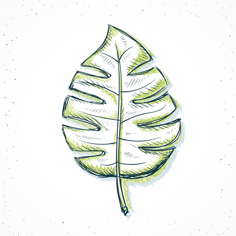 den handgjorda palmbladet skissar in stil royaltyfri illustrationer