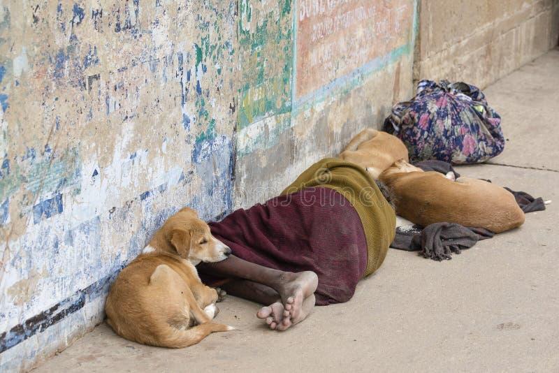 Den hemlösa mannen ligger med hundkapplöpningen på gatan nära Ganges River i morgon av Varanasi, Indien arkivfoton