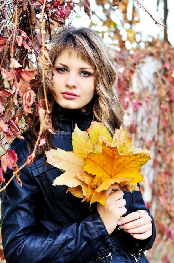 In den Herbstfarben stockbild
