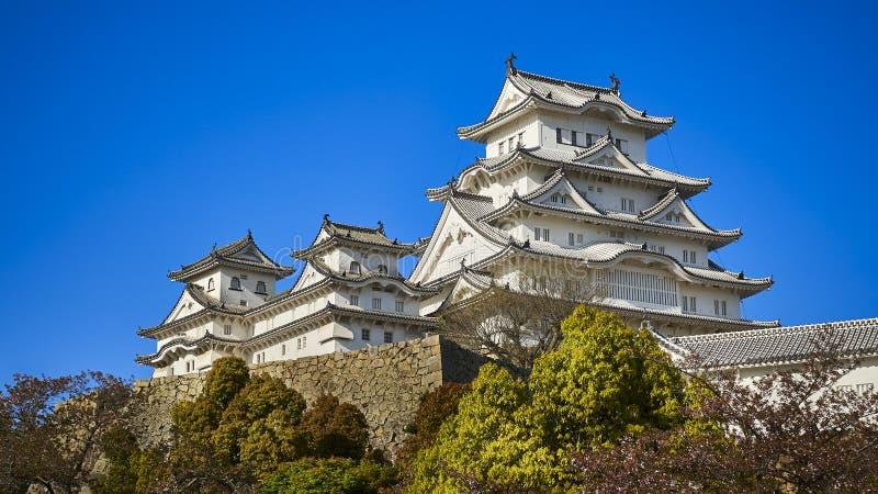 Den Himeji slotten i ett varmt eftermiddagljus och klara blåa himlar, Japan royaltyfri bild