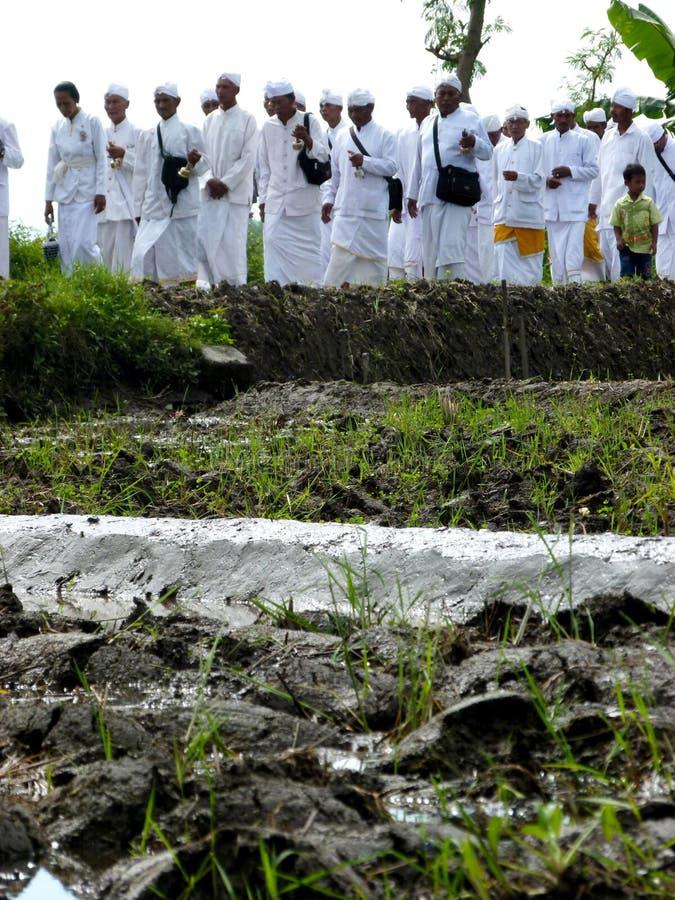 Den Hindus ritualen ståtar royaltyfri foto