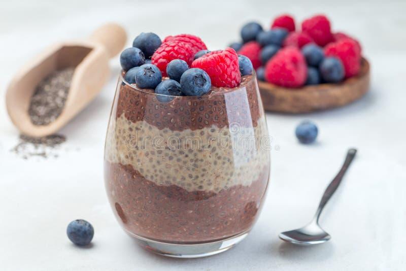 Den i lager choklad- och jordnötsmörchiaen kärnar ur pudding i exponeringsglas som garneras med hallonet och blåbäret som är hori fotografering för bildbyråer