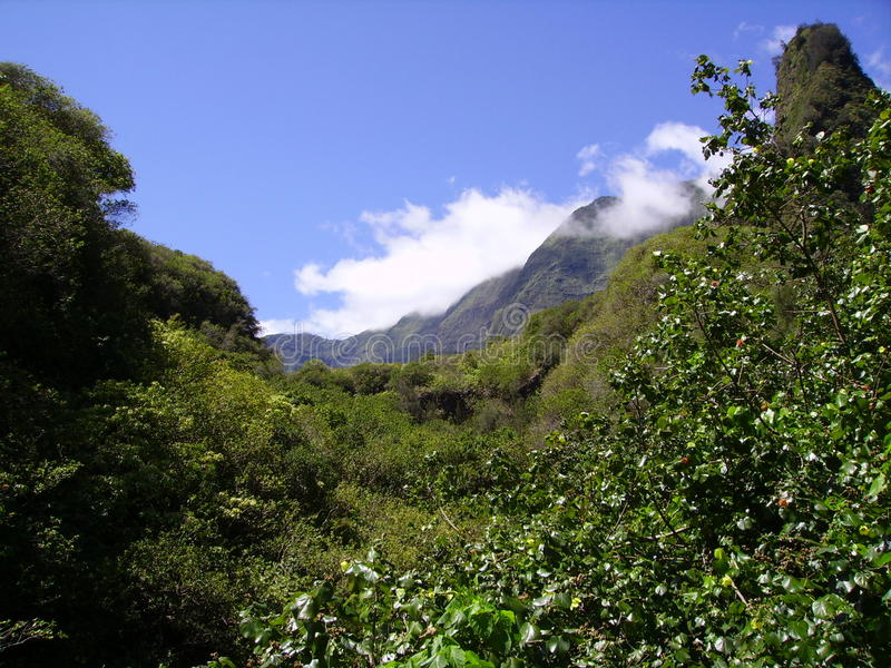 Den Iao dalen arkivbilder