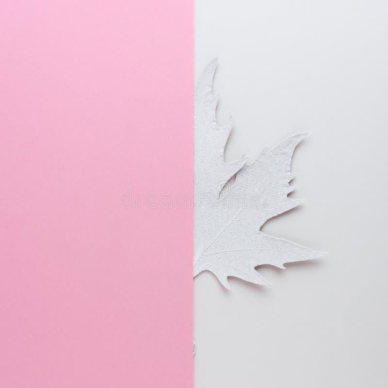 Den idérika orienteringen av vit målade höstbladet på ljus bakgrund royaltyfri fotografi
