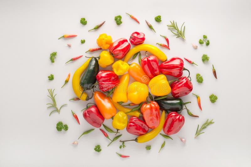 Den idérika orienteringen gjorde grönsaker mexikansk habanero för chilipeppar, b arkivbild